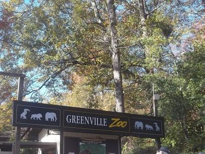 The Greenville Zoo