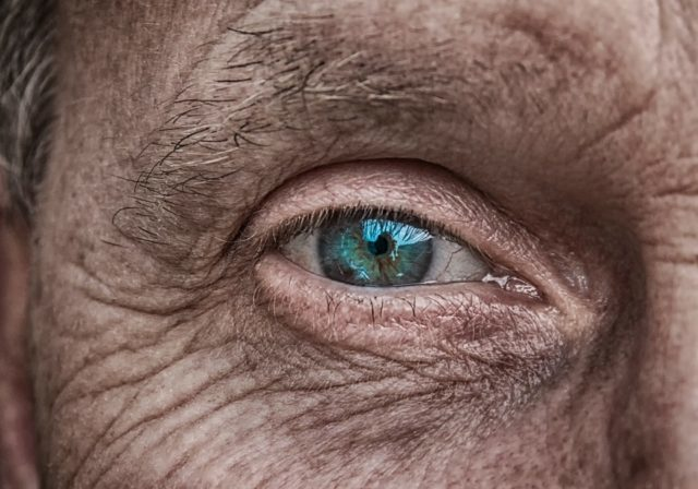 The Green-Eyed Monster (Photo by analogicus via Pixabay under the Creative Commons)