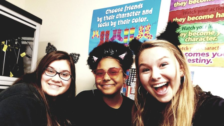 Speaking of a black cat...there were three black cats at the party! Is that thrice the bad luck? (Photo courtesy of Allie Weber)