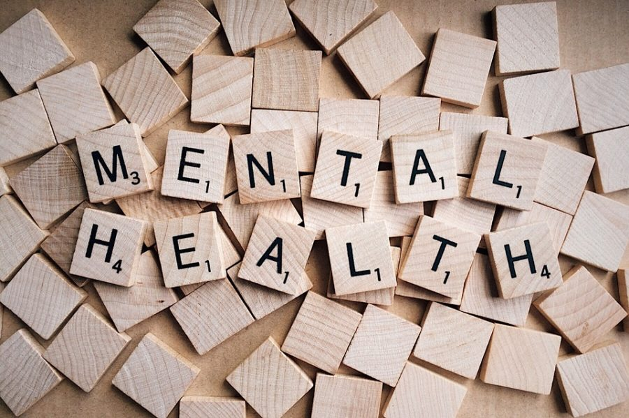 Mental+health+is+a+serious+subject+that+often+goes+unnoticed+%28Photo+courtesy+of+Pixabay%2C+photo+credits+to+Wokandapix%29.