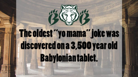 Yo Mama's So Old
