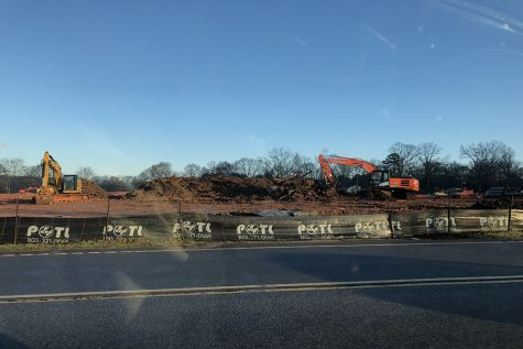 Greenville is a quickly growing city, and neighborhoods, factories, and other developments are popping up daily. Although growing a city is good, it comes at a cost. Unfortunately, these developments mean habitat loss for Greenville's wildlife (Photo courtesy of Amy McConnell).