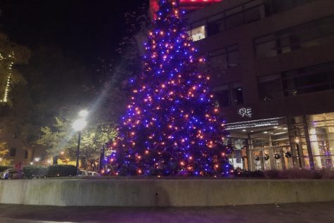 Downtown Greenville is a lovely place to spend the holiday season. Photo courtesy of Mattie McConnell, Photo Credits to Mattie McConnell)